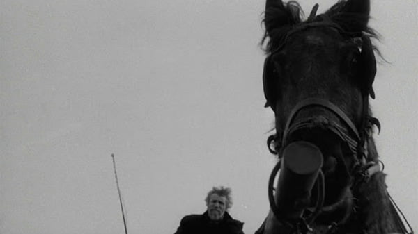 The-Turin-Horse-kultalt.com